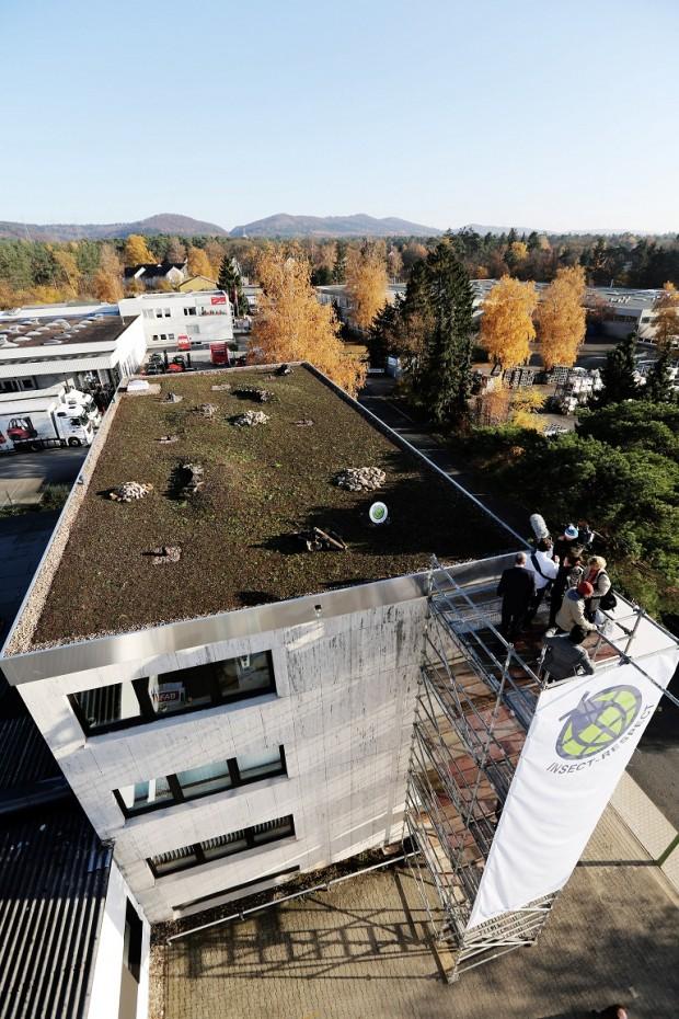 """EnthŸllung der ersten Insekten AusgleichsflŠche der Welt. Teil der Aktion """"Fliegen retten"""" fŸr die Firma Reckhaus in Bielefeld. Auf dem Dach der Firma Reckhaus sind 200 Quadratmeter AusgleichsflŠche geschaffen worden.Das schweizer KŸnstlerduo """"Atelier fŸr Sonderaufgaben"""" Frank und Patrik Riklin haben die Aktion initiiert."""